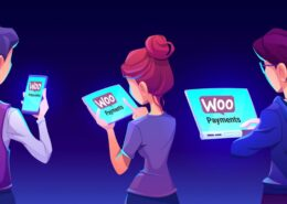 WooCommerce Payments Overview